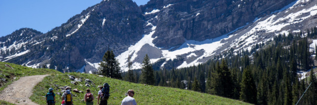 Hiking Albion Basin
