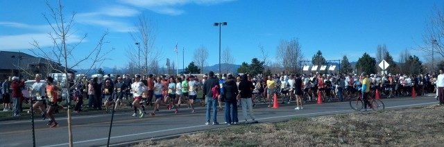 Turkey Race, thanksgiving