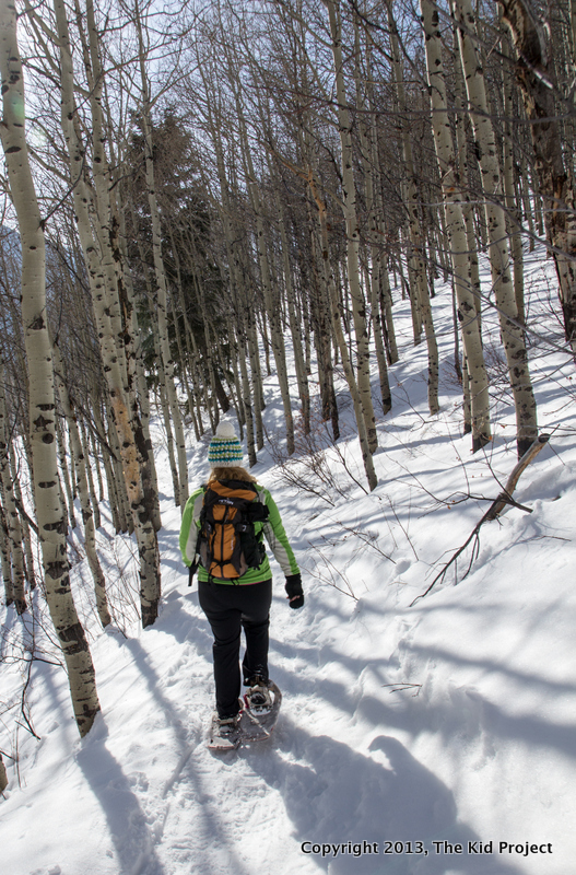 snowshoeing through aspen glades, Dog lake, Wasatch Range