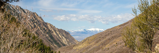 SAlt LAke Valley / Millcreek Canyon in Spring