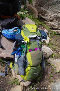 Deuter ACT Lite SL