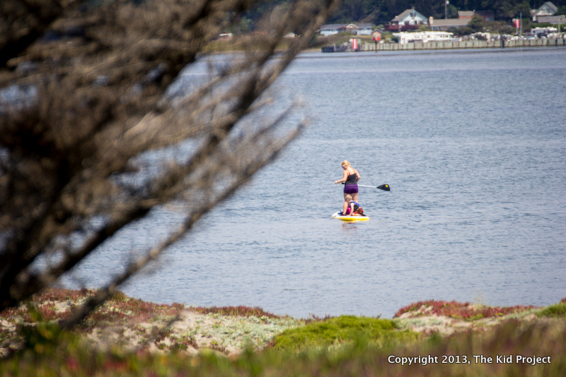 SUP on Hang Ten with kids, bodega harbor
