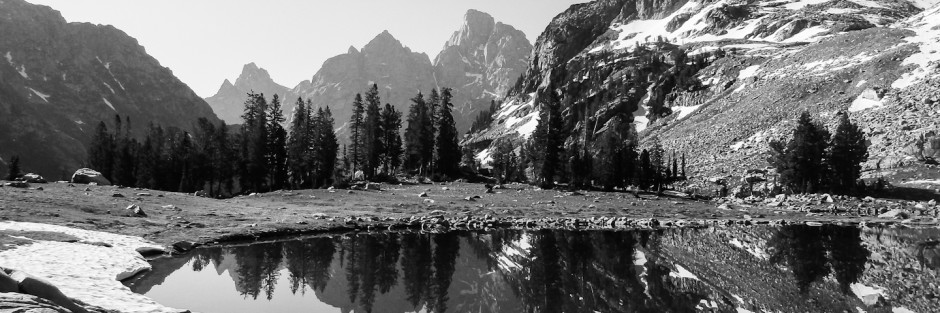 black and white / Teton National Park