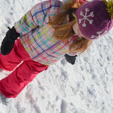 snow dragon bib