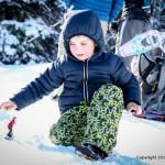 Shredz Terrain park snowboarding toys review