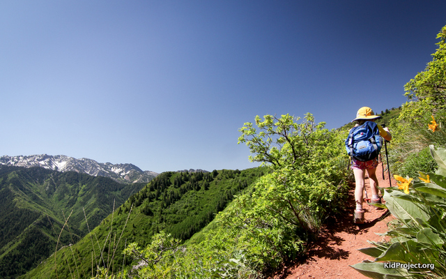 Hiking in the Wasatch, Utah
