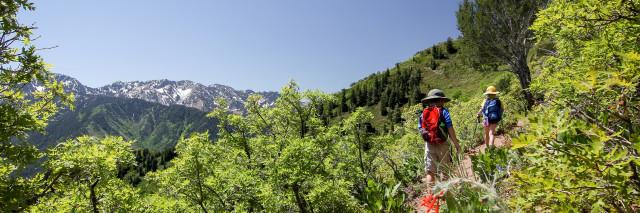 Hiking Grandeur Peak, Utah with kids