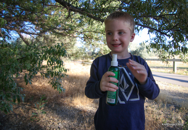 kid friendly and pet friendly bug spray - mercola