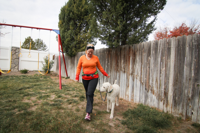 Hand-free running belt for dogs