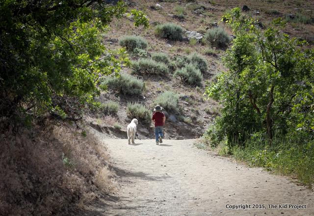 Dog friendly hikes, Salt Lake Utah