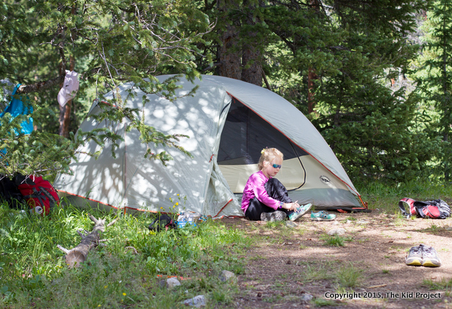 The Big Agnes Copper Spur UL4 is a great family backpacking tent.