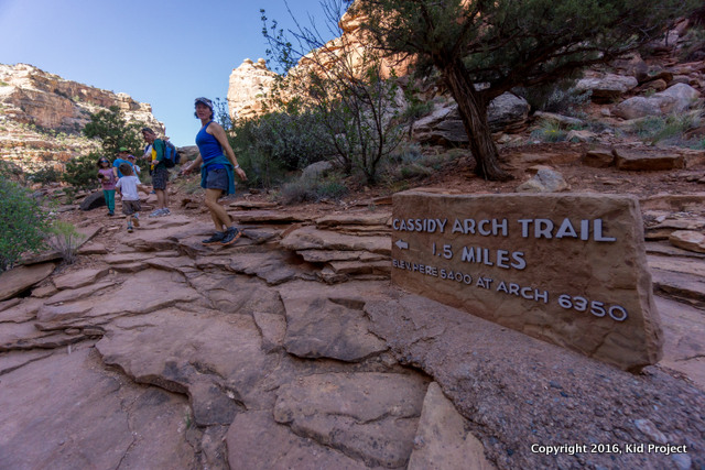 The trail to Cassidy Arch is well marked, to say the least.