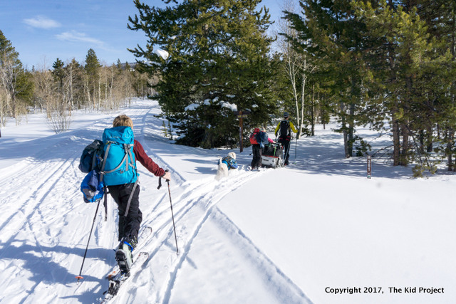 ski touring with kids