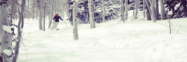 skiing, powder