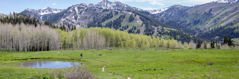 Trail into Willow heights Lake, Utah