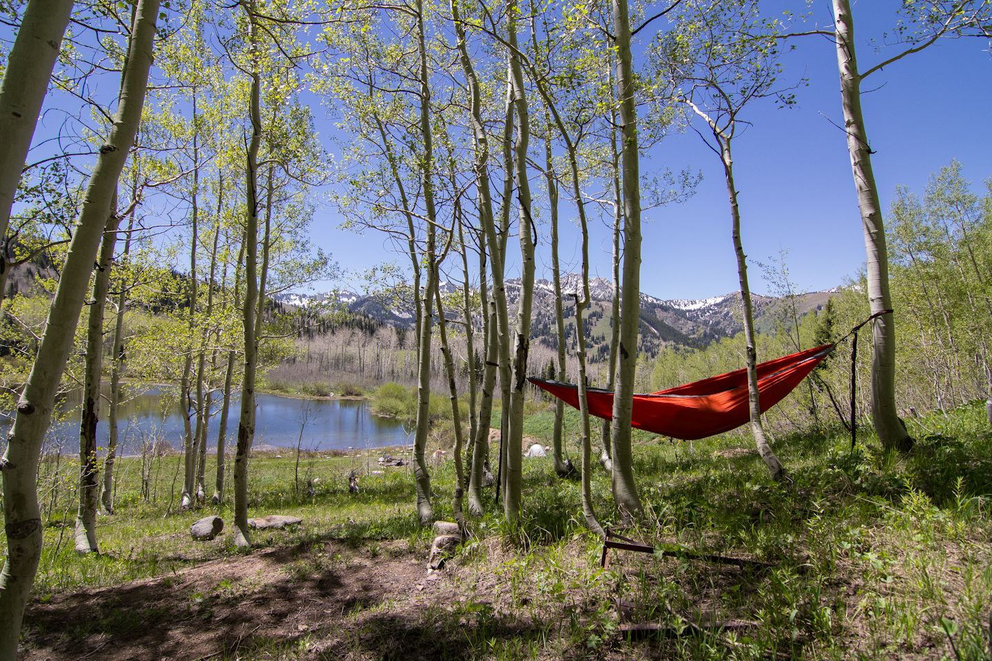 Gear Review Eno Double Nest Hammock With Profly The Kid