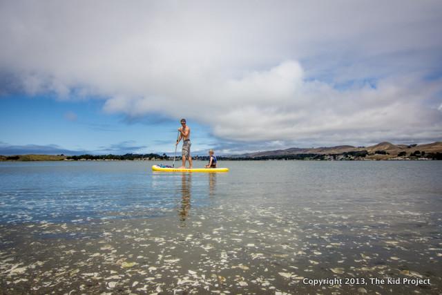 Father/son SUP on Bodega Harbor