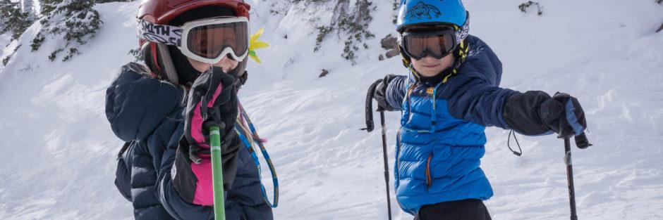 ski poles, teaching skiing